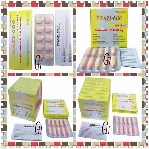 Antiparasitic Praziquantel Tablets
