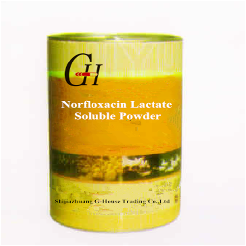Norfloxacin Lactate Soluble Powder