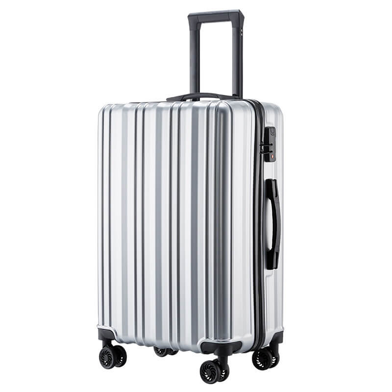 abs luggage (4)